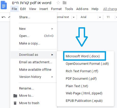 word or pdf בקורות חיים